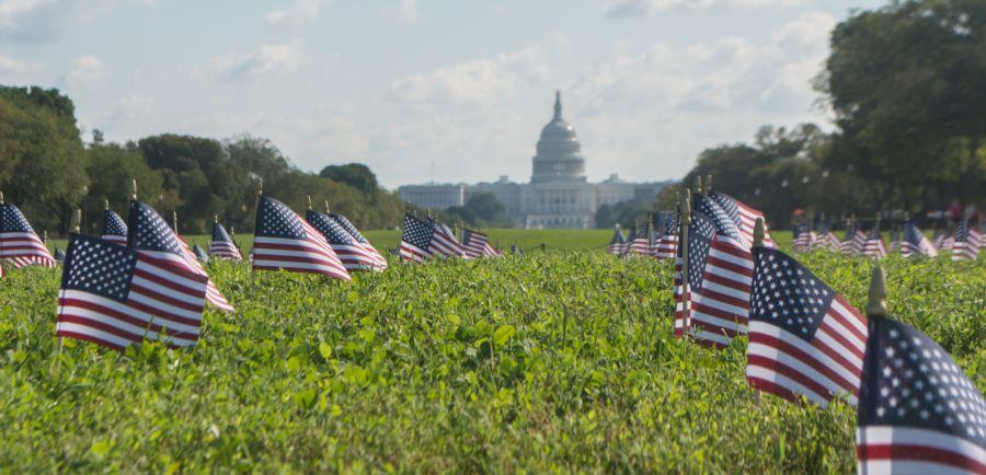 Veterans Suicide Crisis